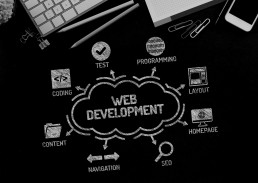 PHP and ASP.NET Web Development
